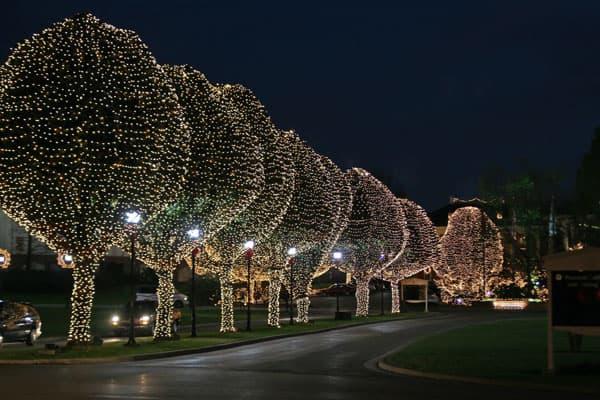 Hvilken lyskæde er billigst i vinterhalvåret?